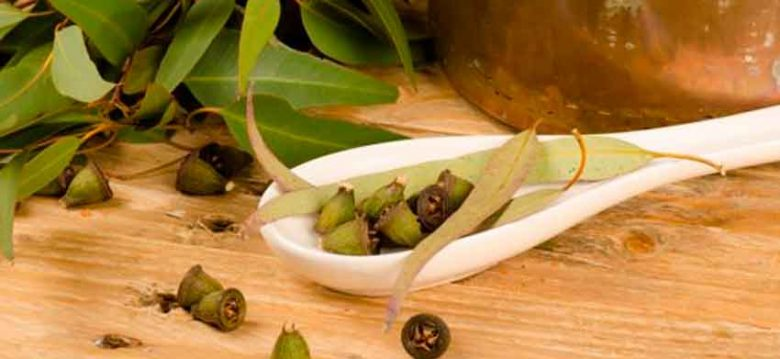 Consejos y hierbas medicinales para la gripe