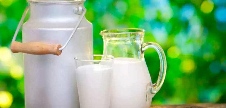 Sustitutos Sanos y Nutritivos de la Leche de Vaca