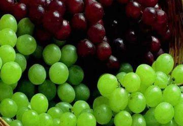 Las Uvas y sus grandes beneficios