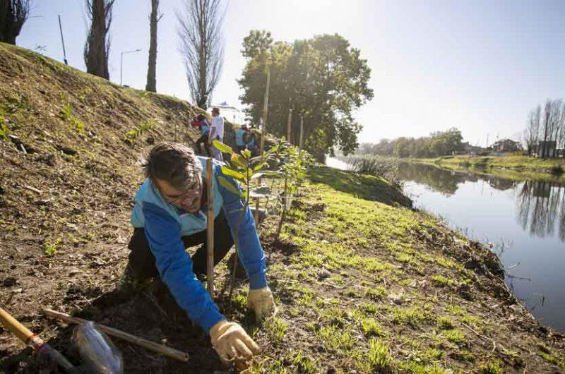 La ciudad plantó 1.000 árboles a la vera del Riachuelo