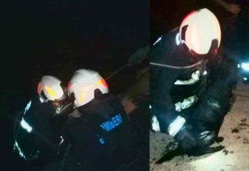 Bomberos rescataron a un perro que cayó al Riachuelo