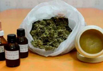 Comenzó el debate por la legalización del cannabis terapéutico