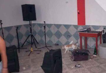 Desbaratan fiesta clandestina en La Carbonilla